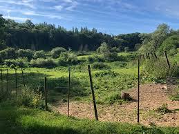 Kauwberg : un site plus écologique